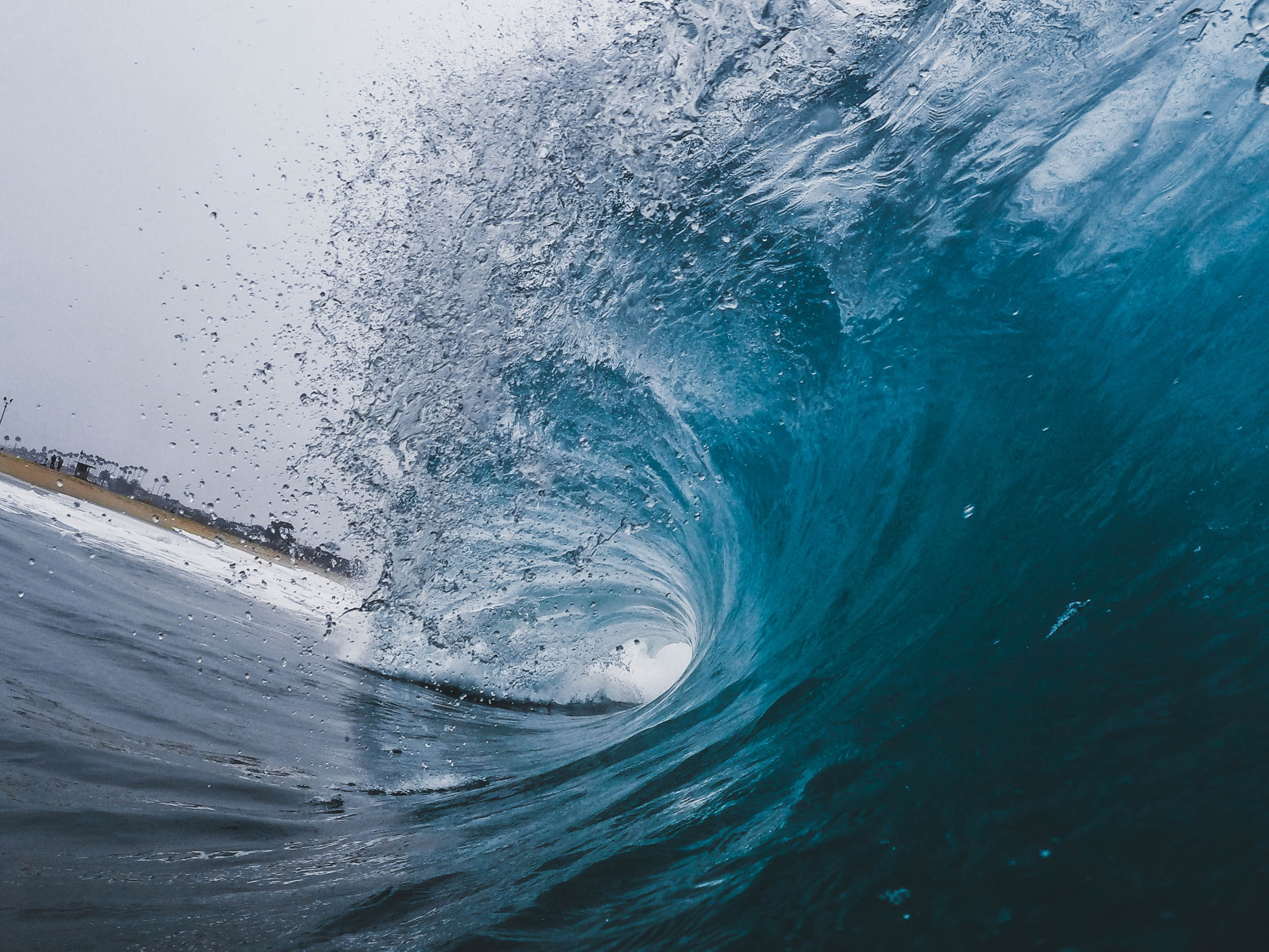 Surfing the Emotional Waves of Covid-19